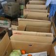 野菜の出荷